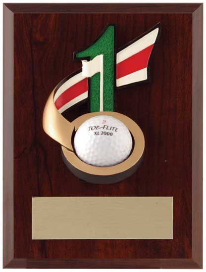 "Hole In One Plaque - 7"" x 9"" (Golf Ball Not Included)"