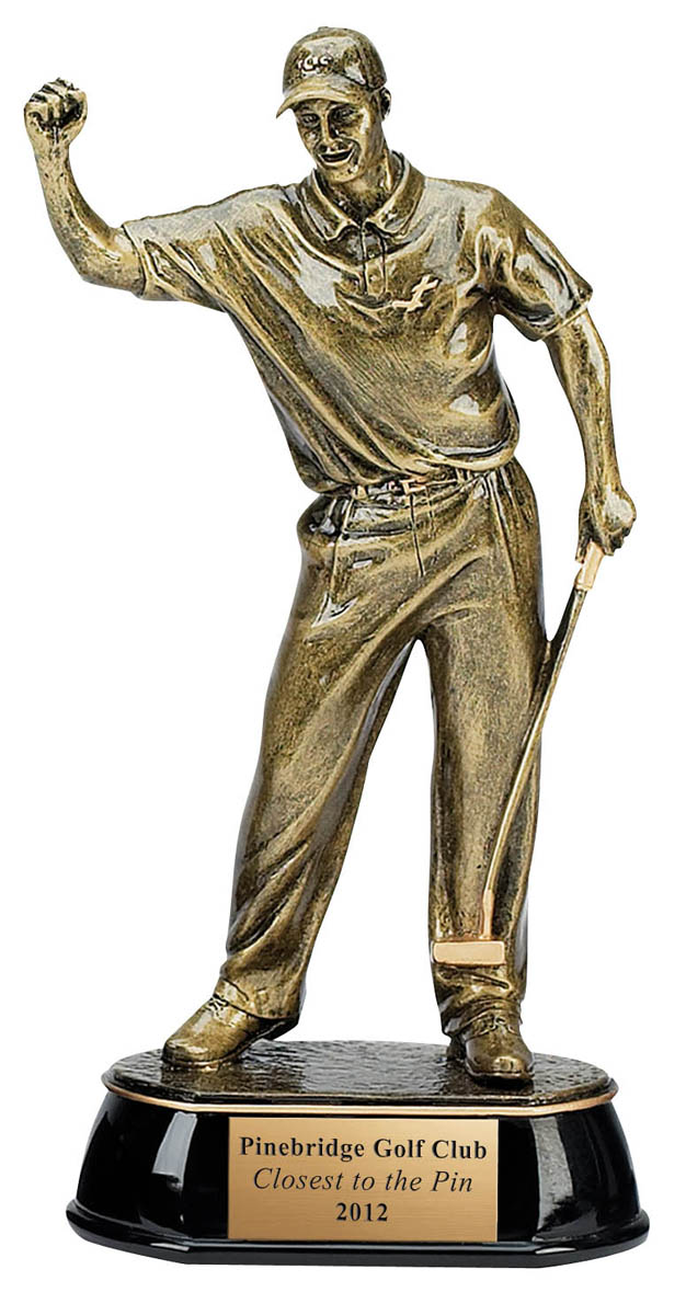 Celebration Golfer Trophy - 9""