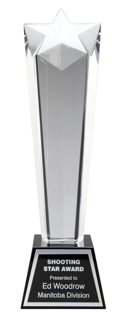 "GCY638A - 9"" Crystal Award"