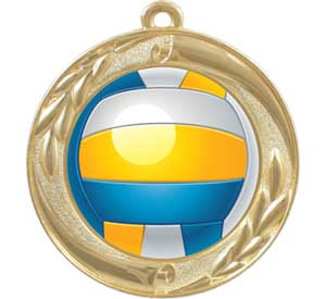 Volleyball Dome Series Medals