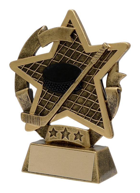Star Gazer Hockey Award - 5""