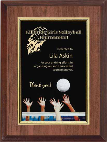 "Volleyball Full Color Activity Plaque - 6"" x 8"""