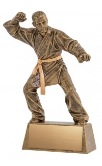 Pinnacle Martial Arts Trophy - 8 1/2""