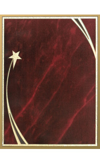 "Shooting Star Plaque Red Plate - 9"" x 12"""