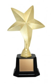 Icon Star Award - 7""