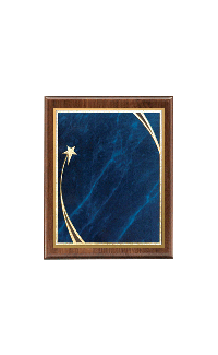 "Shooting Star Plaque Blue Plate - 7"" x 9"""
